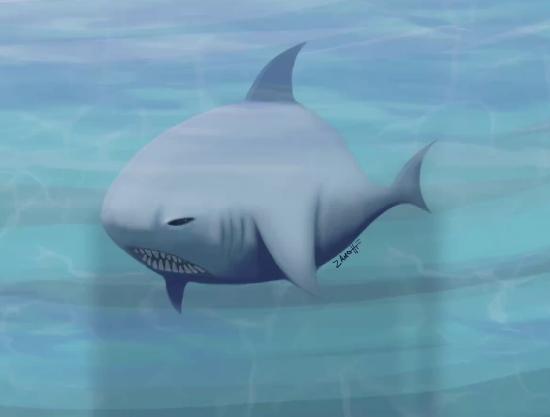 Shark – Speed Painting Procreate IPad