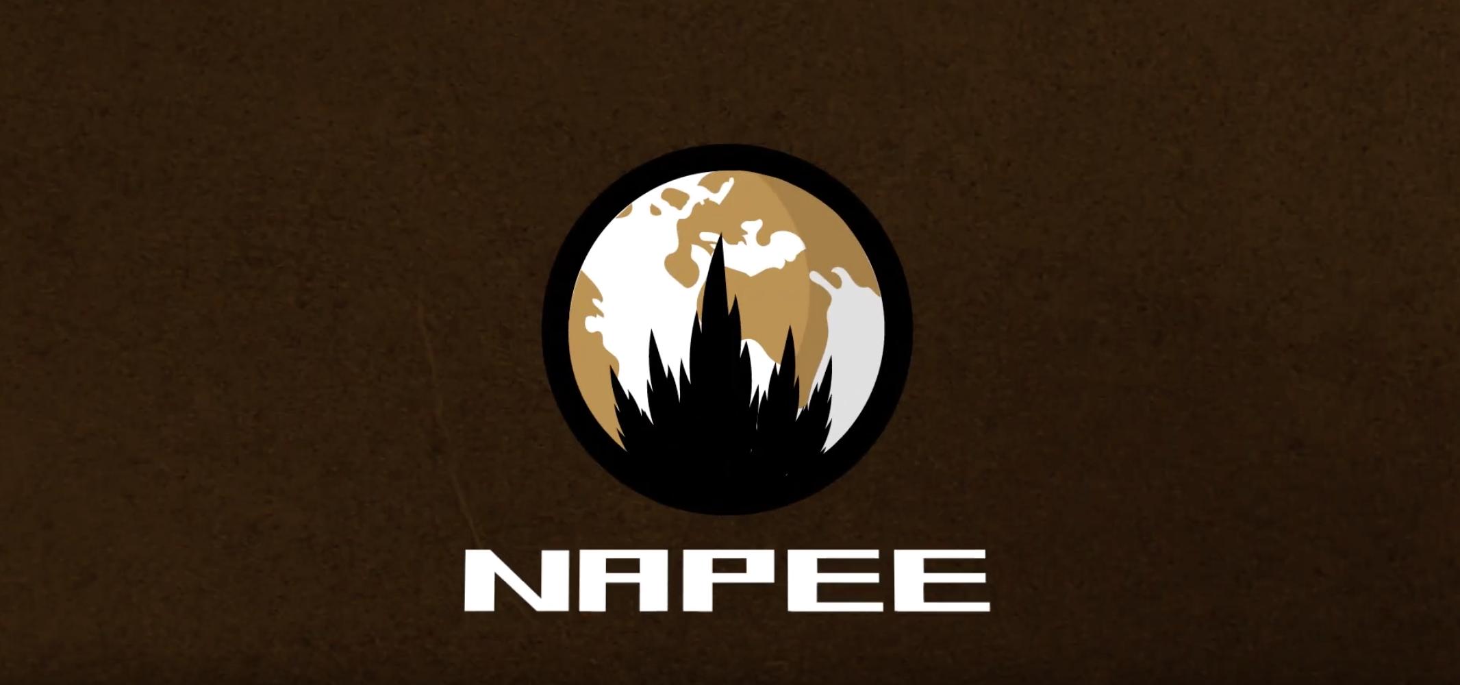 Napee ID logo